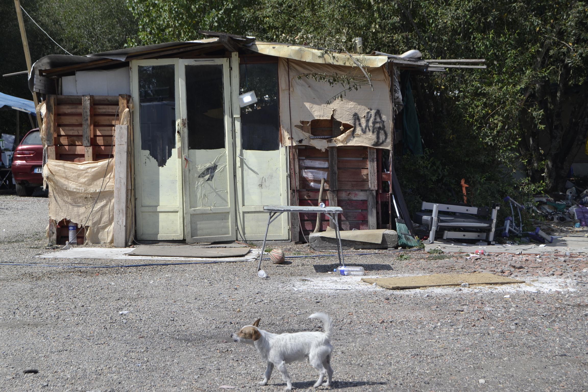 St Vincent de Paul squat bidonville chien maison dynameau